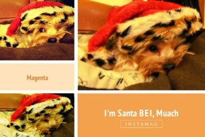BEI with his Santa hat :p