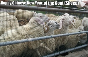 Chinese New Year of the Goat (Sheep)