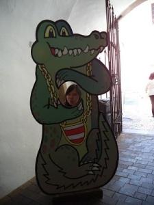 The icon of Brno Dragon
