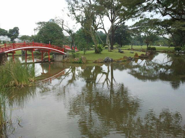 Bridge in Chinese Garden