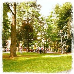 Park of Magenta